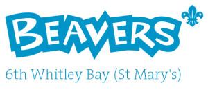 Beavers 2
